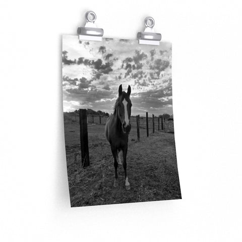 Black and White Horse Print Wall Art Dramatic Clouds Premium Matte vertical poster - Jim N Em Designs