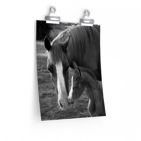 Mare and Foal Black and White Premium Matte vertical poster - Jim N Em Designs