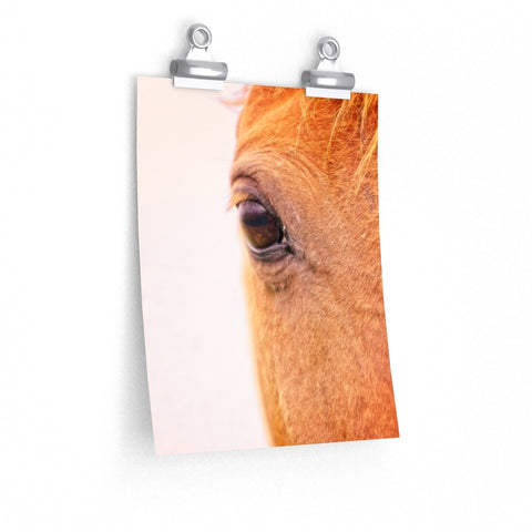 Horse Eye Equine Photo Print Wall Art Premium Matte vertical poster - Jim N Em Designs