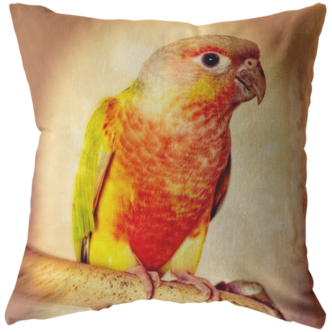Pineapple Green Cheeked Conure Throw Pillow Bird Pet Tropical - Jim N Em Designs