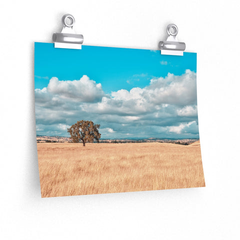Oak Tree Landscape Clouds Photo Wall Art Print Premium Matte horizontal poster - Jim N Em Designs