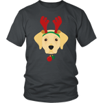 Golden Labrador Retriever T-Shirt Reindeer Antler Hat and Ornaments - Jim N Em Designs