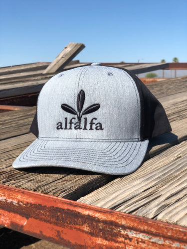 The Alfalfa SOLID BACK Hat - Heather Grey/Black