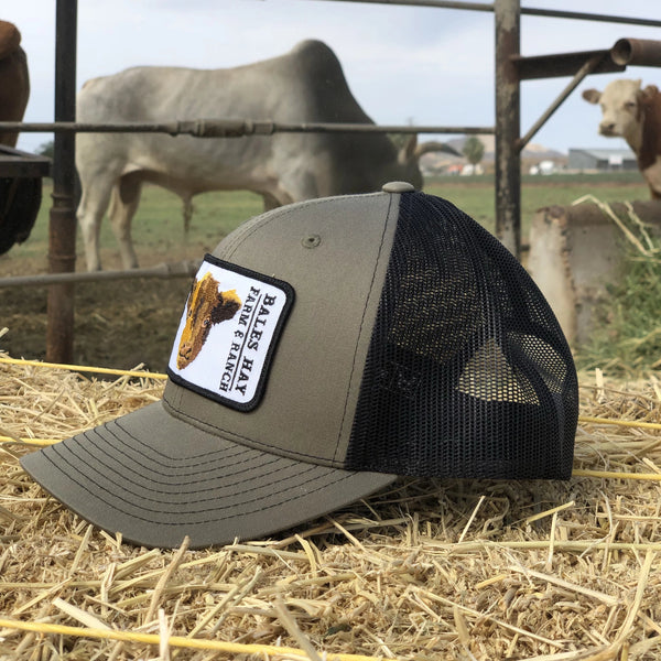 Bales Hay calf Patch Hat- Lowden/Black