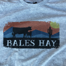 Load image into Gallery viewer, Cow and Calf Sunset Tee - Heather Grey