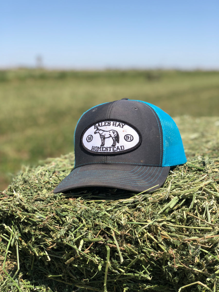 b397bc6e19c Homestead Oval Horse Patch Trucker Hat ...
