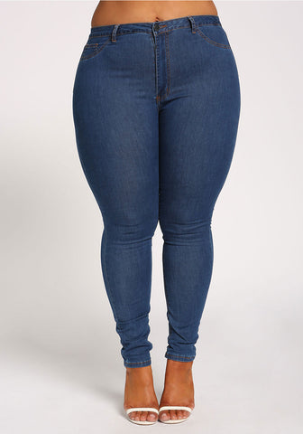 Curvy Everyday Skinny Jean - Superior Boutique