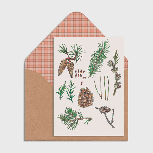 Christmas Pine Cone Greeting Card