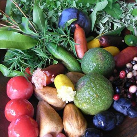 Bush Foods with Veronica Cougan and Graeme White Sunday 6 May 8:30 - 10:30