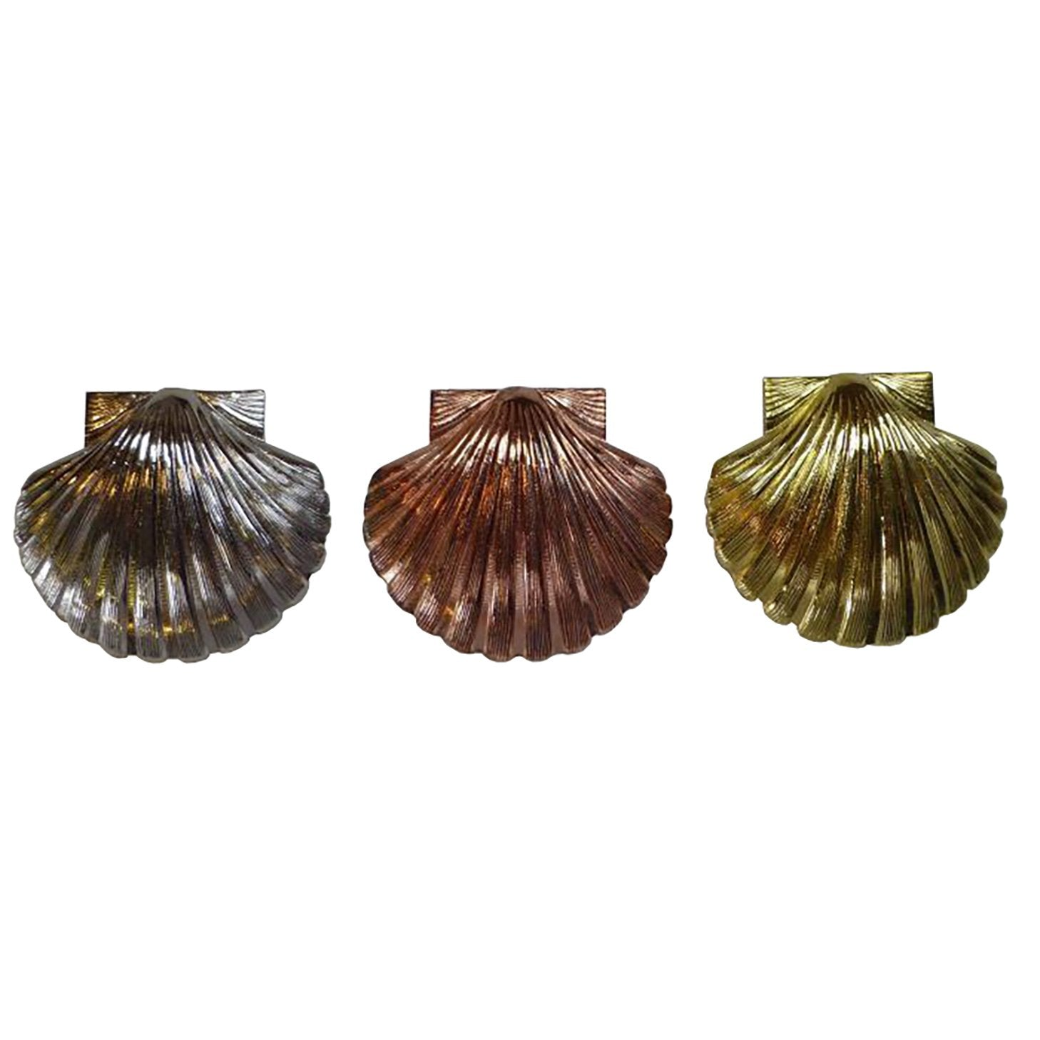 St. Thomas of Acon Shells - Different Sizes and Colors - Bricks Masons