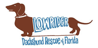 Low Rider Dachshund Rescue of FL