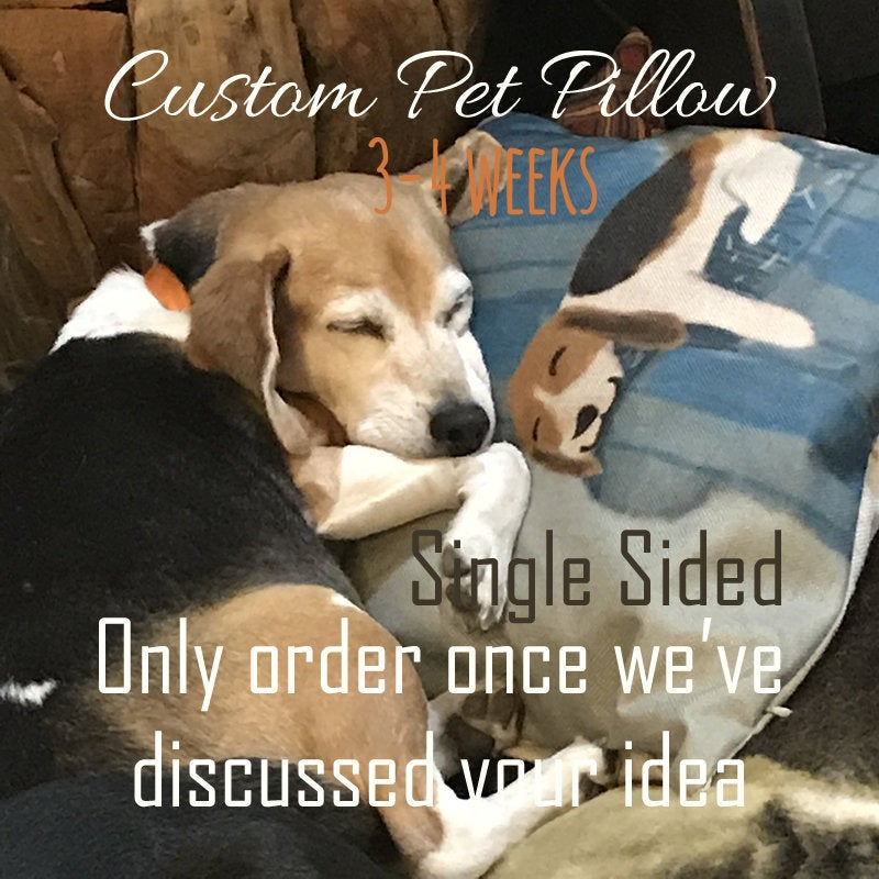 Pet Photo Pillow | Pillow Cover | Throw Pillow Covers 18x18 | Cat Pillow | Custom Pet Pillow | Gift