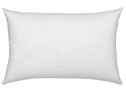 12x18 or 18x12 | Indoor Outdoor Hypoallergenic Polyester Pillow Economical Insert