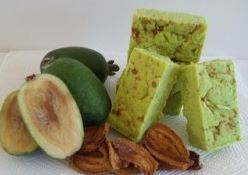 FEIJOA FUDGE