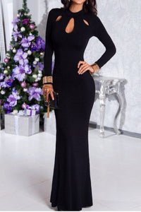 Sexy Long Sleeve Plain Evening Dress - lolabuy