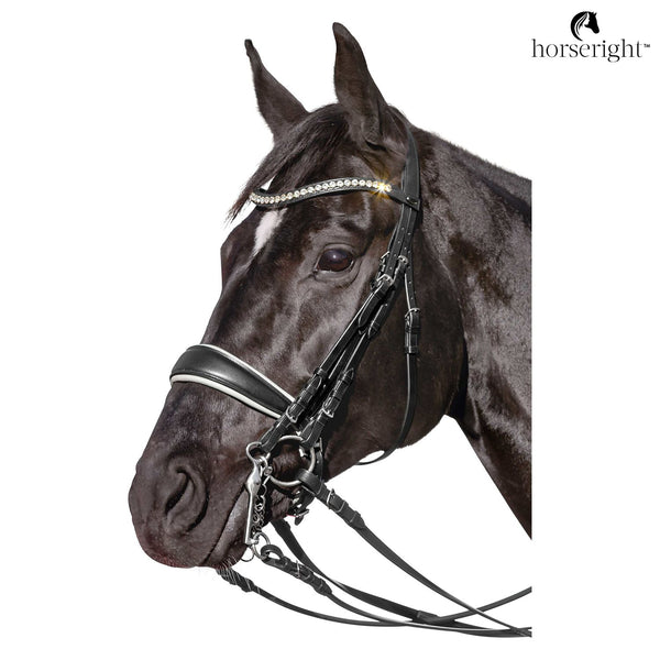 New York City Double Bridle