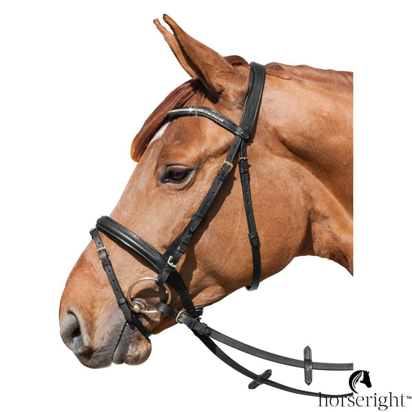 Loesdau Summer Bridle