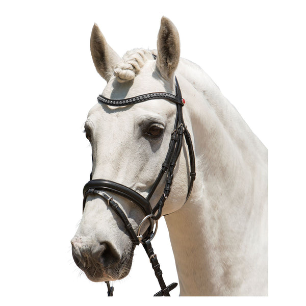 kieffer bridle Ultrasoft Fashion