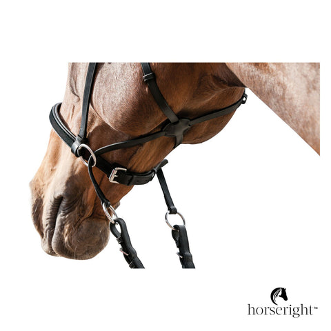 Loesdau Trail Riding Bridle