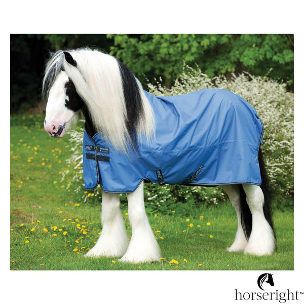 Horseware Amigo Paddock Blanket Xl Hero 6 Medium