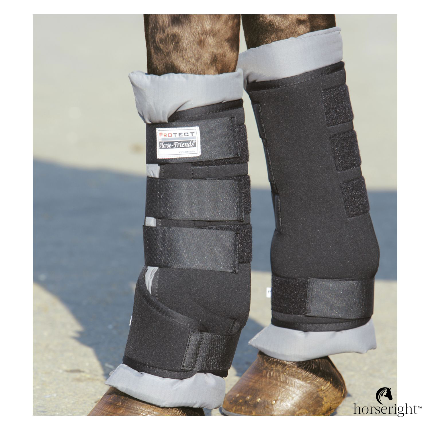 Protect By Horse-Friends Transport Tendon Boots