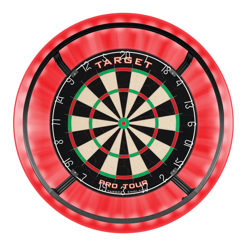 Dartboard package with dartboard, lights and surroung