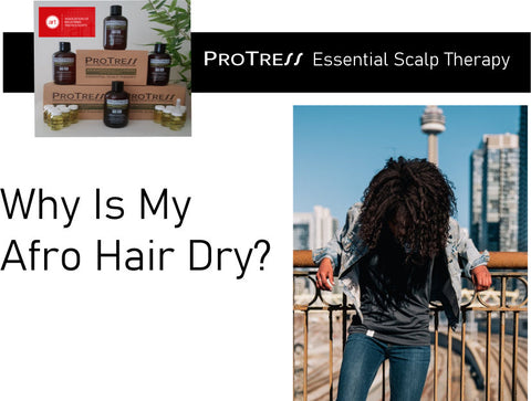 why is my afro hair dry?