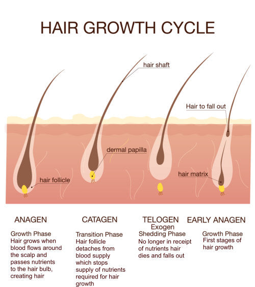 hair loss can be a symptom of stress