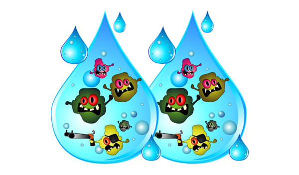 Preventing Waterborne Diseases, Bacteria, Viruses and Cysts