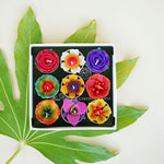 Big Assorted Tropical Flower Scented Tea light Set