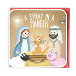 A Stray in a Manger Greeting Card