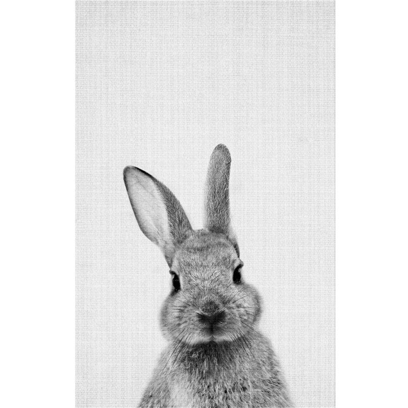 Gray Rabbit Wall Art