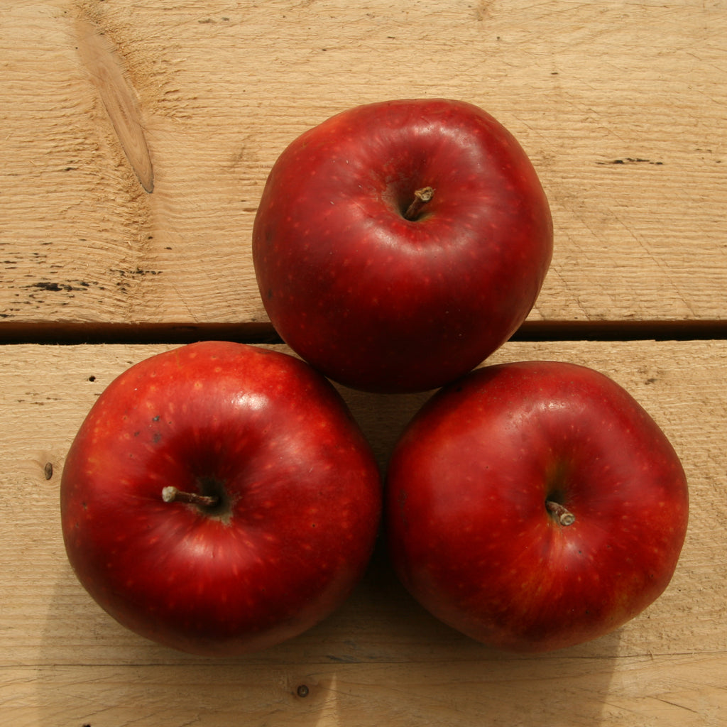 Apples Discovery (BD) 1kg Suffolk