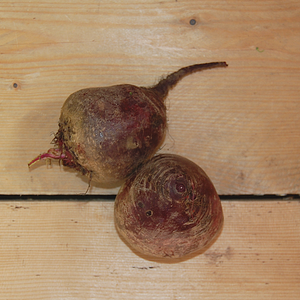 Beetroot Cheltenham Greentop (BD) 500gm Cambs