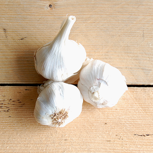 Garlic (BD) 100g Sussex