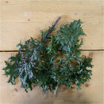 Kale Red Russian (BD) 300g Kent