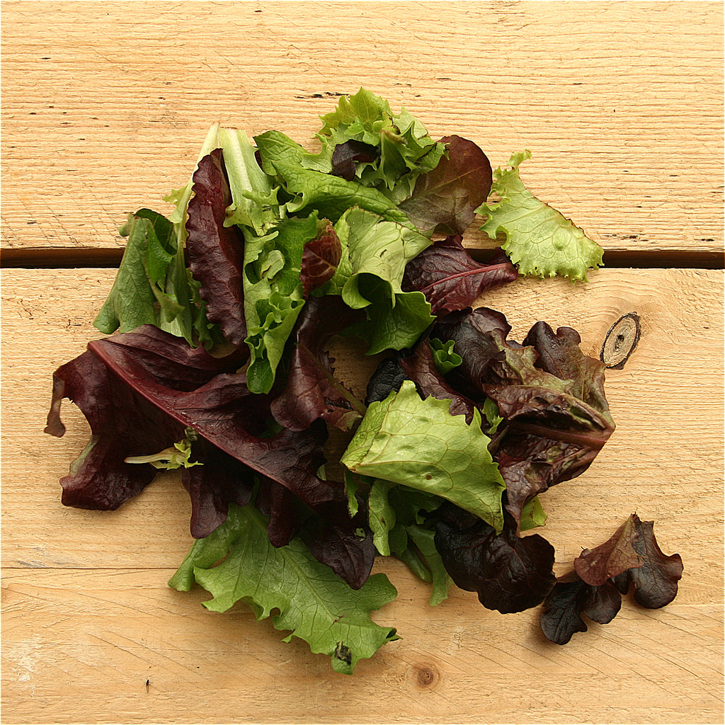Mixed Salad Leaves 100g (BD) Cambs