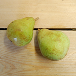 Pears Beurre Hardy (BD) 500g Suffolk