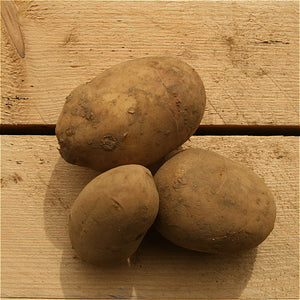 Potatoes Lady Balfour 1kg Lincs