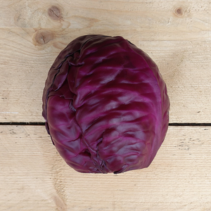 Cabbage Red 900gm