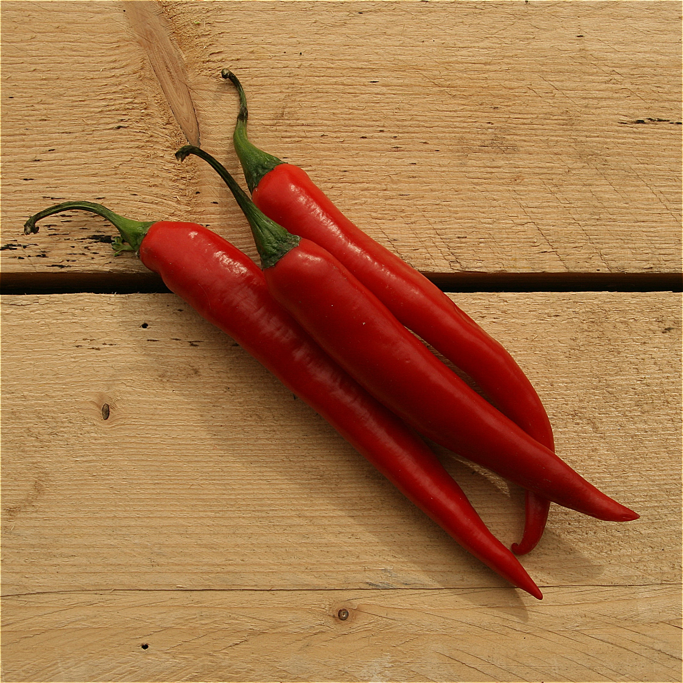 Chili Peppers Green (BD) 100g Sussex