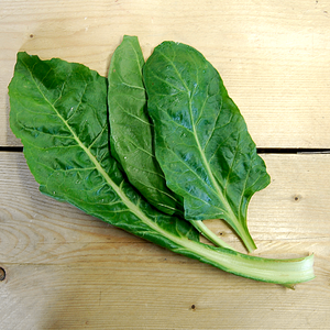 Spinach Perpetual (BD) 250g Sussex