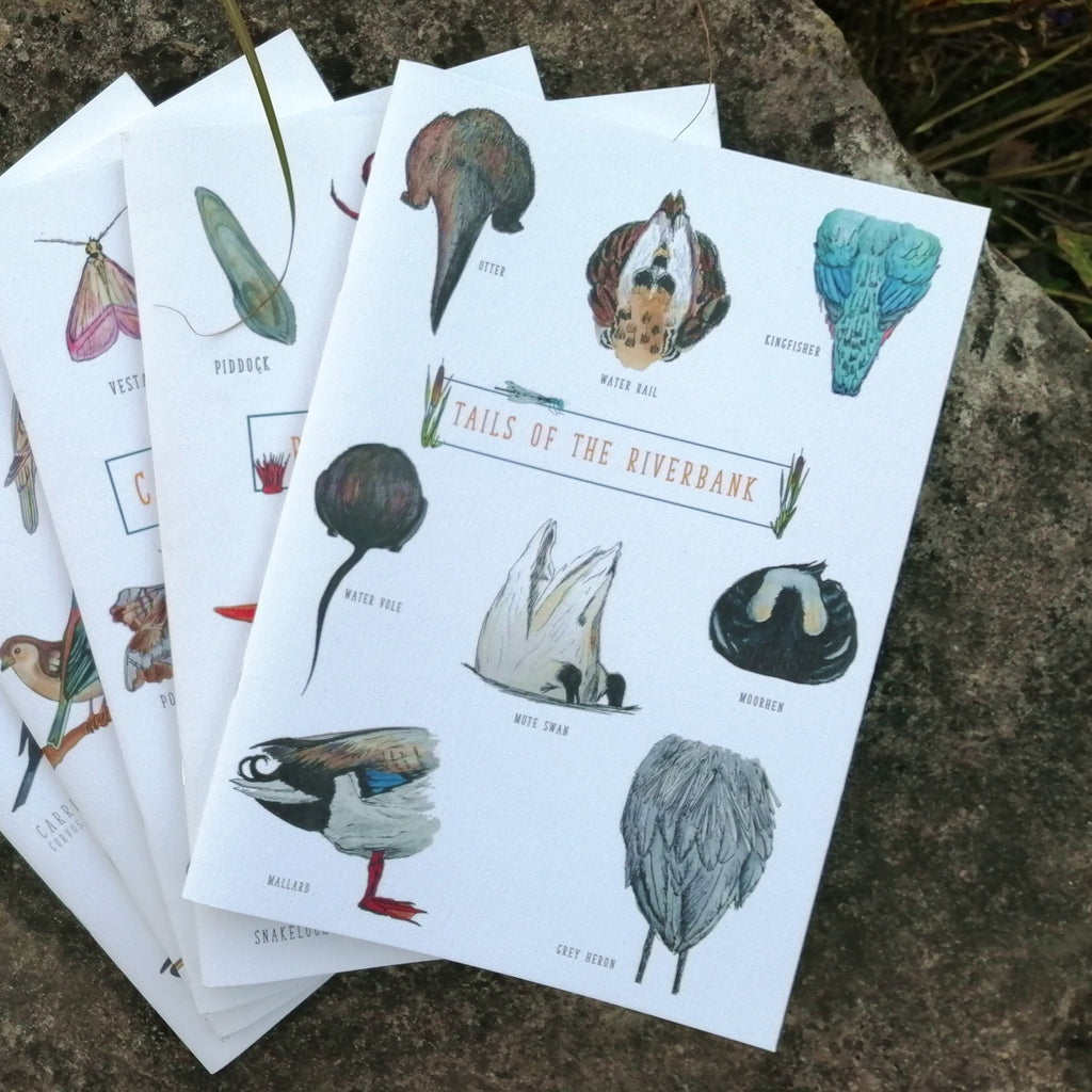 Selection of Nature Illustration A4 Lined Notebooks