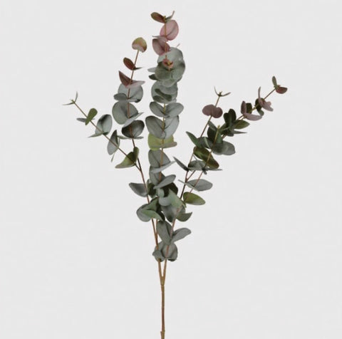 Large Eucalyptus green with blush hints