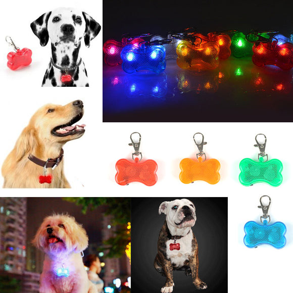 Os led chien