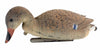 Sport Plast Double Sided Mallard Decoy - Feeding Hen