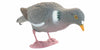 Sport Plast Full Body Pigeon - Feeding