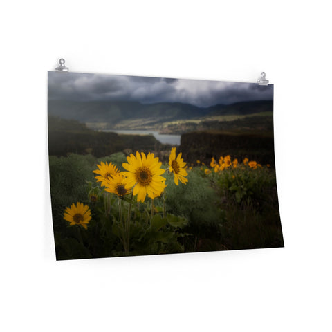 """The Hills Are Alive"" Premium Matte horizontal posters by John Ramer Photography"