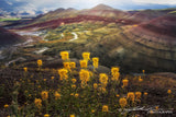 The Painted Hills by John Ramer Photography