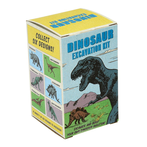 Dinosaur Excavation Kit - Zigzag and Zebra